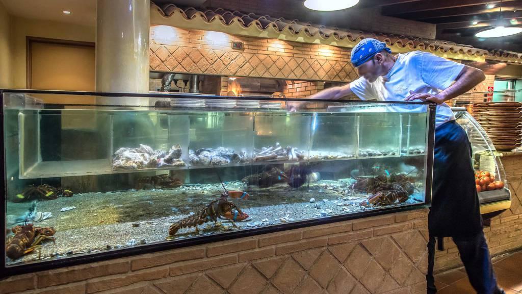Ristorante-Pizzeria-Braceria-Pappa-Reale-Rome-aquarium